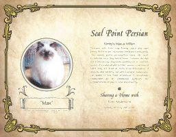 Cat Pet Pedigree
